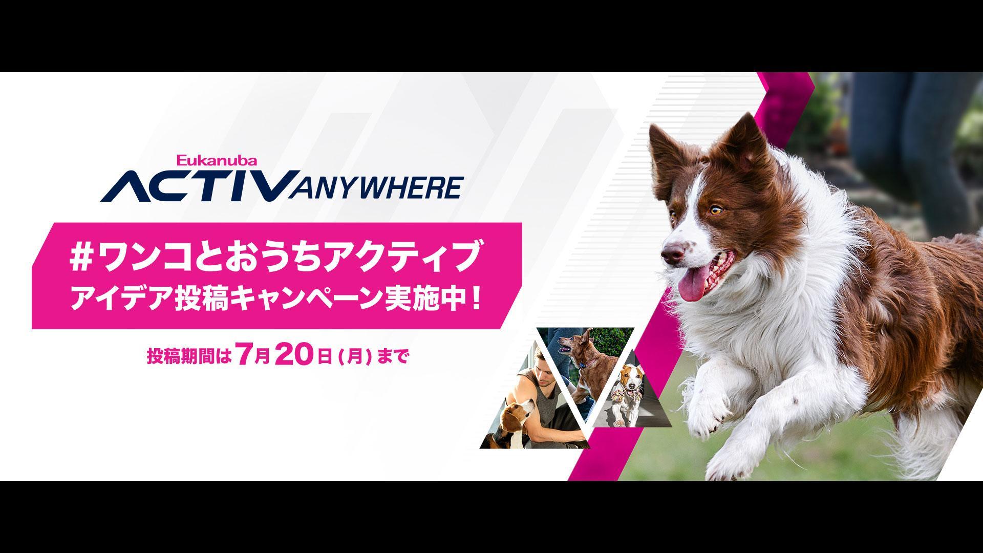 Royal Canin Eukanuba ACTIVANYWHERE Campaign・Contents・Web・PR 制作
